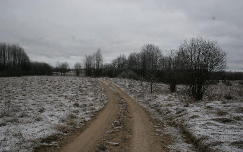 Alytaus raj., Skraičionių k. – žemės ūkio sklypas (14.5 ha)