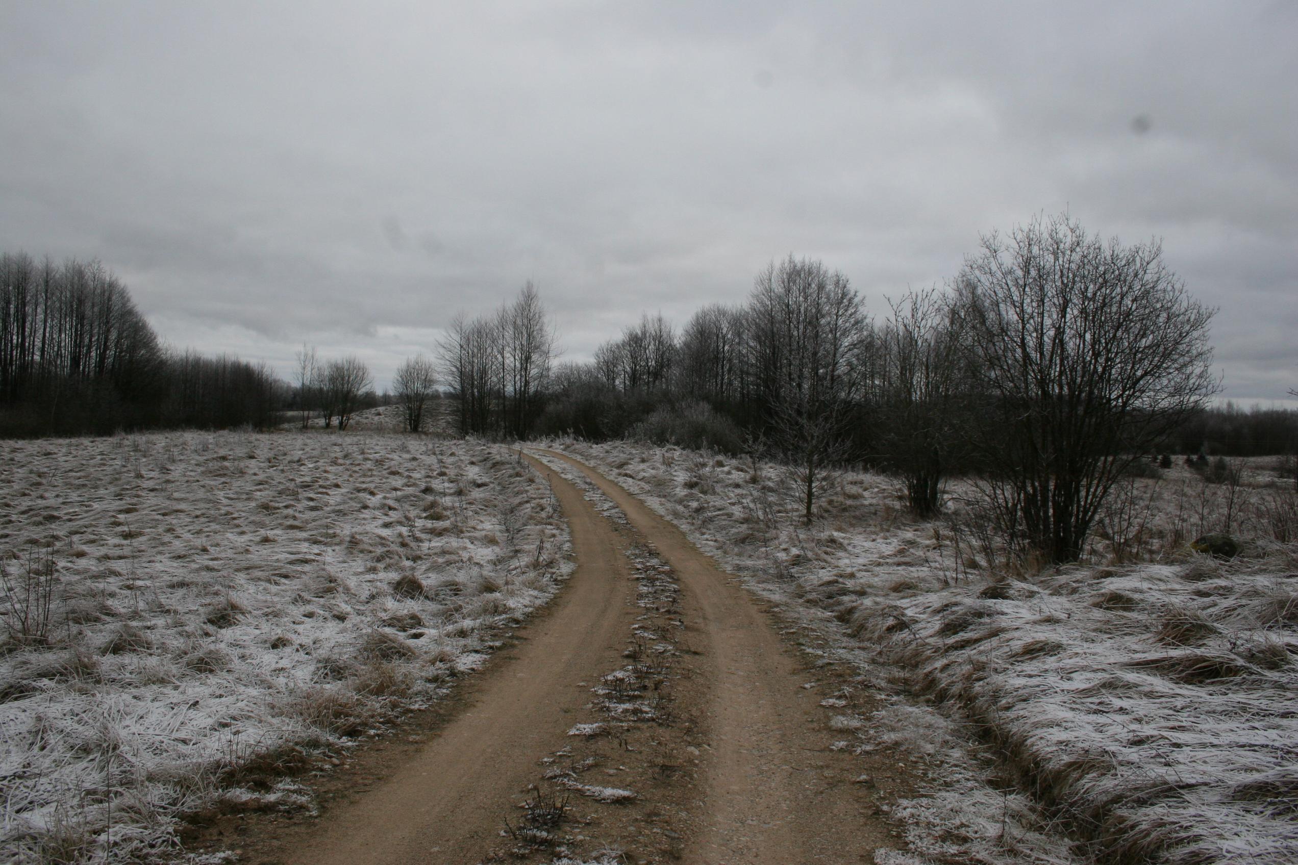 Alytaus raj., Skraičionių k. - žemės ūkio sklypas (14.5 ha)