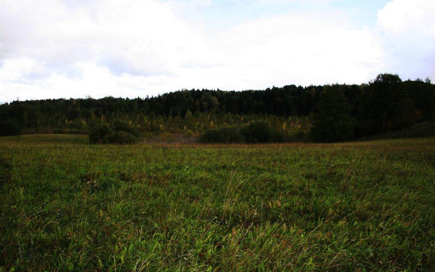 Alytaus raj., Kalesninkų k. – sklypas (11 ha)